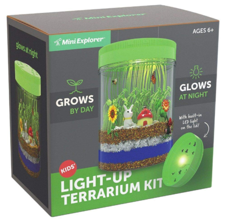 This is an image of a mini garden science kit for kids.