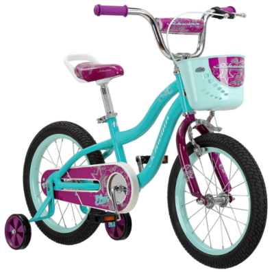 This is an image of girl's bike in blue and purple colors