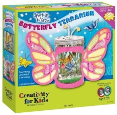 This is an image of girl's Craft kit in pink butterfly design