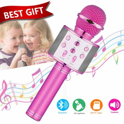 This is an image of a purple portable karaoke microphone for kids.