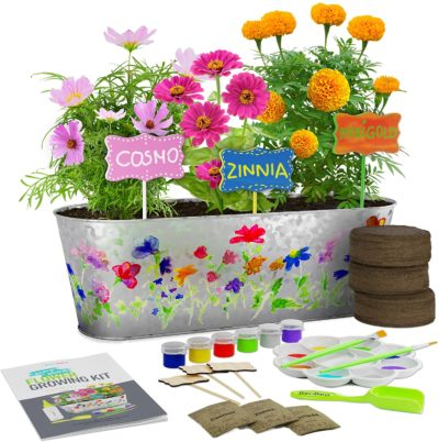 Image of Flower Growing Kit